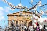 Sagra del Mandorlo in fiore, al via le prime sfilate