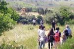 Agrigento, weekend di Pasqua alla Kolymbetra