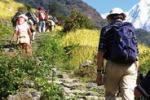 Agrigento, giornata di trekking al monte Quisquina