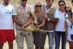 Tartaruga e gheppio salvati nell'Agrigentino