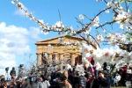 Mandorlo in fiore, «la Sagra diventi bene Unesco»