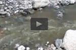 Fogne in mare a Sciacca: le immagini