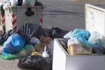 Canicattì, rifiuti in via Vittorio Emanuele: qui anche un cane morto