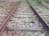 Pericolo di disastro ferroviario, nel Siracusano denunciati 3 allevatori per due distinti incidenti