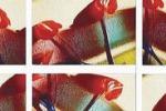 Arte & foto. Quando il clic diventa una mattonella
