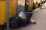 Cestini rotti a Caltanissetta, rifiuti in bella mostra