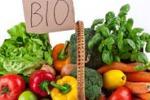 Caltanissetta, il mercatino biologico apre i battenti