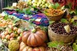A Caltanissetta arriva il mercato biologico