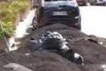 Etna, in molte strade cenere ancora da raccogliere