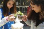 Fiumefreddo, studenti giardinieri per un giorno: le immagini