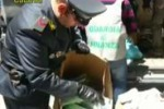 False griffe, sequestro a Catania: le immagini