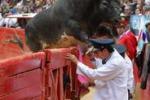 Toro salta fuori dall'arena a Citta' del Messico