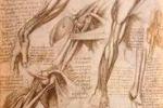 Trapani accoglie Leonardo da Vinci