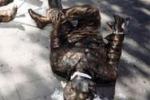 Falcone e Borsellino, le statue danneggiate