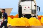 Mondello, camion sugli ombrelloni: uccisa una donna