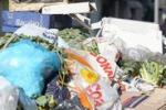 Rifiuti a Palermo: Sos dalle periferie - di Igor Petyx