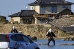 Sisma in Giappone, dopo la tragedia paura per la centrale nucleare