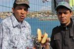 Lampedusa come il nord Africa, sbarchi senza sosta