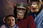 LA FOTO. Obama come una scimmia: polemiche