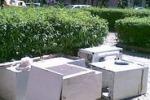 Cronache loro. Piazza Lolli sporca: verde negato a Palermo