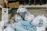 Cronache loro. Dopo la movida, i rifiuti: sos da Palermo