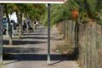 LA FOTO. A Palermo piste ciclabili... al palo