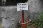 Rifiuti a Catania, tecniche di prevenzione