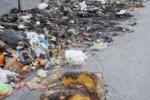 Palermo, rifiuti: emergenza infinita