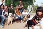 Parco Cassara' e i cani senza museruola
