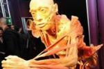 Corpo umano in mostra a Torino