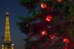 Gli alberi di Natale da Palermo a Parigi