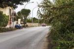 Erba incolta invade la carreggiata lungo la Palermo-Ficarazzi