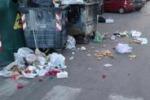 Palermo, cenciaioli sporcano via Croce Rossa: è allarme