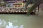 Straripa il fiume Belice, terme allagate