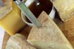 Assaggiatori di formaggi, corsi ad Enna