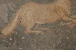Mosaici di Piazza Armerina vittime dei piccioni