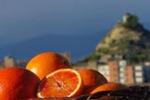 Contest fotografico sull'arancia rossa di Centuripe