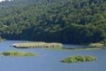 Patrimonio Unesco, la candidatura del parco dei Nebrodi