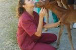 Riapre a Messina il centro di ippoterapia e pet therapy
