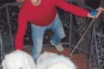 Sant'Agata, anziano si sente male: salvato dal cane del vicino