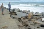 Mareggiata danneggia rete fognaria a Tarantonio, nel nord di Messina