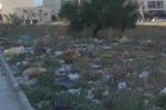 Palermo, rifiuti e degrado in largo Vedinois