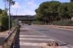 Vigilessa investita da auto pirata a Palermo