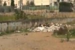 Palermo, terreno abbandonato in via Calandrucci