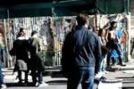 Studenti in piazza a Palermo, strappati i manifesti elettorali