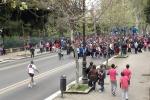 """Palermo, mezza città chiusa al traffico per """"Domenica Favorita"""" e Vivicittà: le vie off limits"""