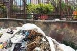 Palermo, da 3 anni discarica davanti ad un asilo comunale