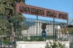 Tgs, a Palermo gli studenti scelgono le facoltà scientifiche