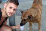 """Il cane-tifoso trovato a Mondello, 2 riminesi: """"È il nostro Buck"""""""