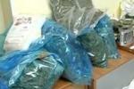 Cinque arresti per droga a Vittoria